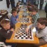 nyuszikupa szeged sakk